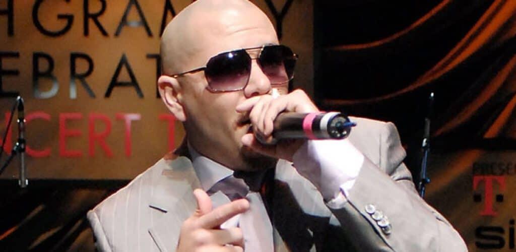 Pitbull profile photo.