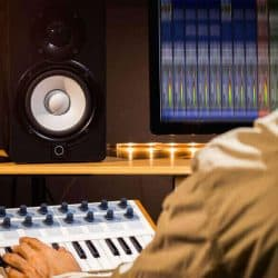Should you only use one studio monitor or two for mixing.